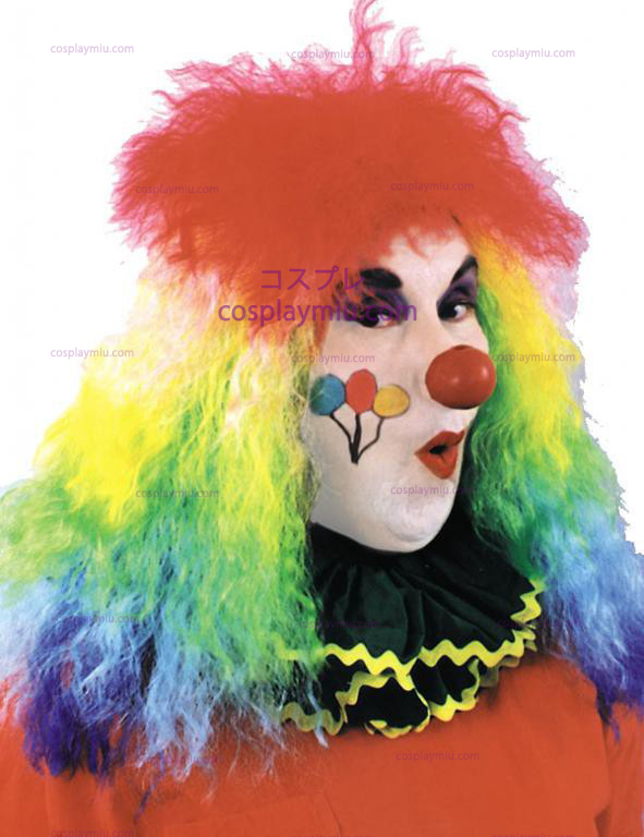 Rainbow Curly Clown Wig